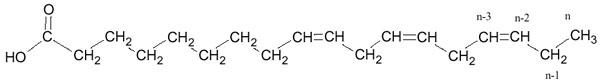 nomenclature des acides gras pdf