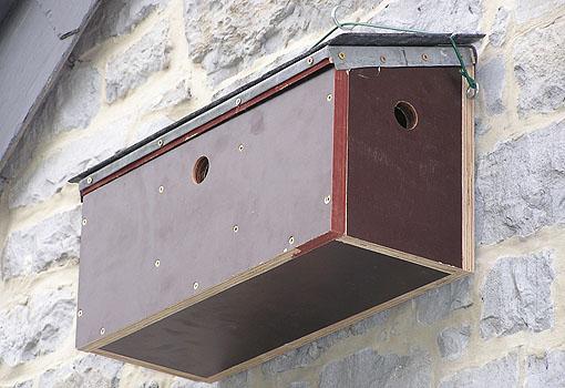Pin d coupe de nichoir pour moineaux on pinterest for Jardin 4 moineaux