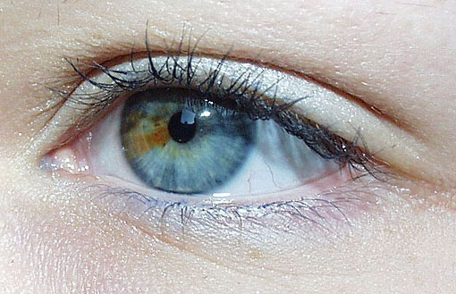 contraste eleve yeux
